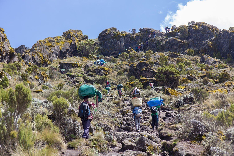Mountain climbs - Mount Kilimanjaro, Tanzania, trekking - Marangu route