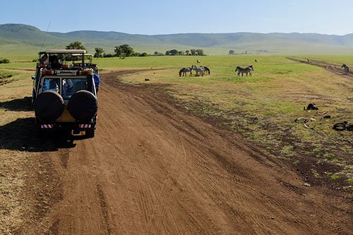 Wildlife safari - 3 days 2 nights, Lake Manyara, Tarangire National Park and Ngorongoro conservation area / crater, Tanzania