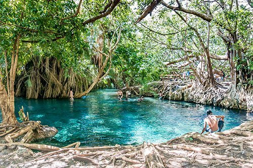 DAY TRIPS AND SHORT TOURS AROUND MOSHI, Tanzania - Kikuletwa hotsprings, Chemka, Maji Moto hot springs