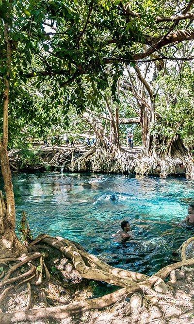 Kikuletwa hotsprings, Tanzania / Things to do in Moshi, Arusha / Hot springs / Chemka, Maji Moto / Day trip
