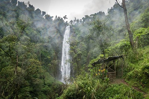 DAY TRIPS AND SHORT TOURS AROUND MOSHI, Tanzania - Materuni waterfall, coffee tour and cultural Chagga experience