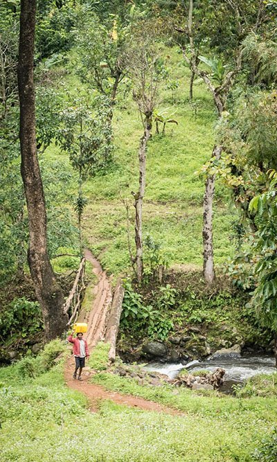 MATERUNI WATERFALLS AND COFFEE TOUR DAY TRIP, TANZANIA