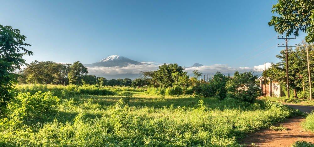 Day hike on Mount Kilimanjaro, Moshi, Tanzania