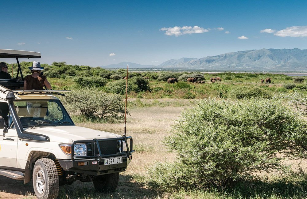 The ultimate safari packing list
