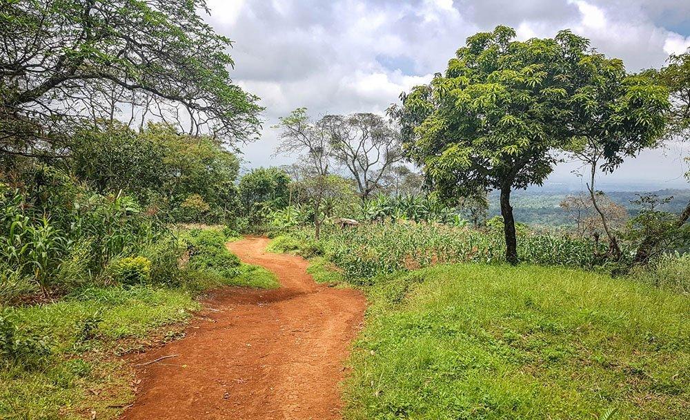 2-day hike on the foothills of Kilimanjaro - From Materuni to Shimbwe - Moshi, Tanzania