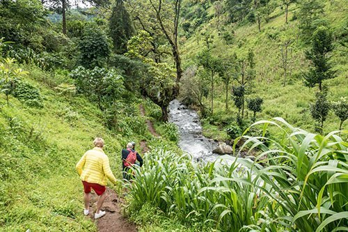 1-DAY HIKE ON THE FOOTHILLS OF KILIMANJARO – MATERUNI TO SHIMBWE, TANZANIA, MOSHI