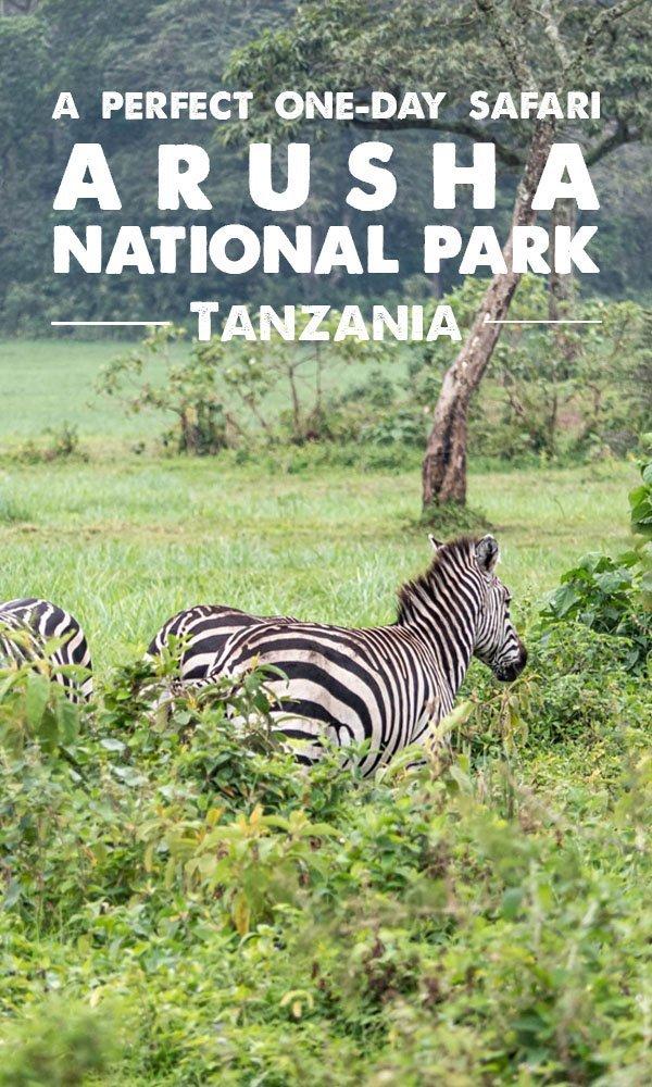 Arusha National Park 1-day safari, day trip, Moshi, Tanzania