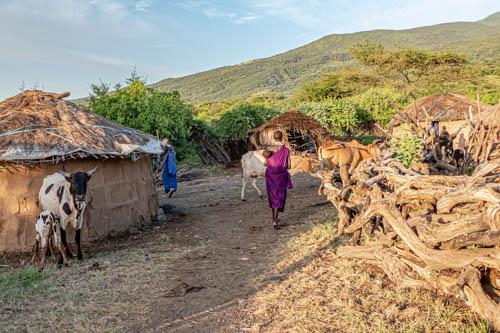 Wildlife safari - Living with the Maasai - 5 days 4 nights, Lake Natron, Tanzania